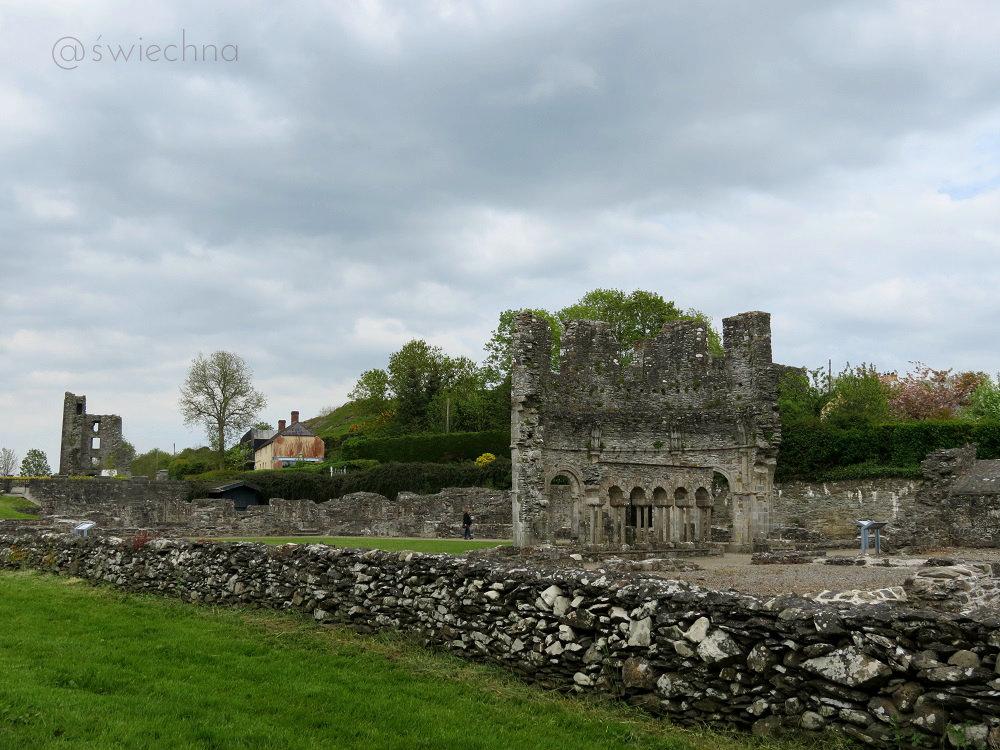 mellifont abbey 2