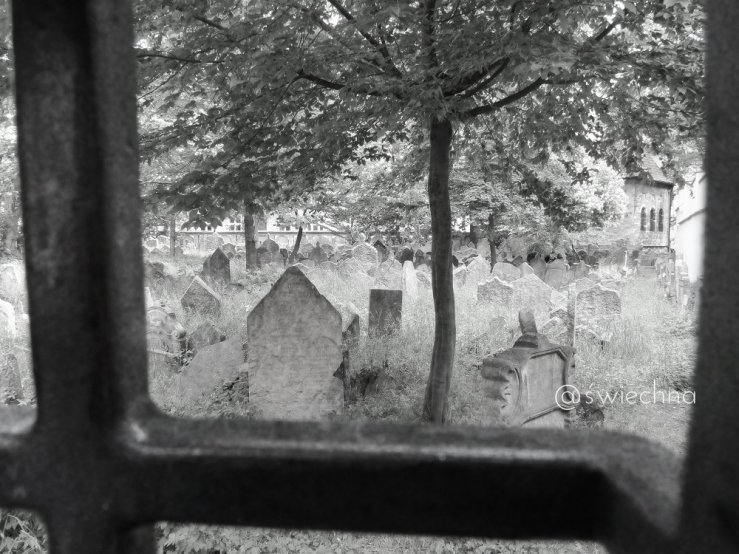Praga cmentarz żydowski