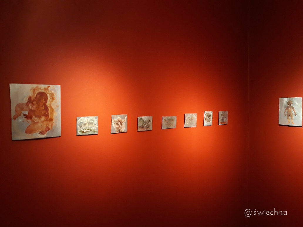 Highlanes Gallery (2)