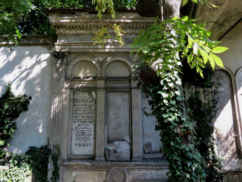 Cmentarz Żydowski we Wrocławiu (1)