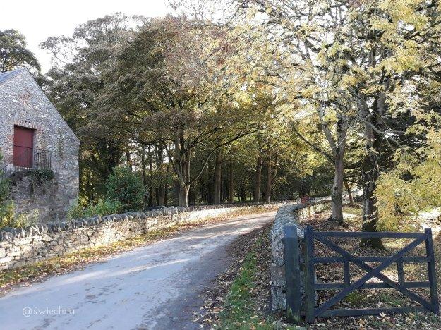 Niedziela Castle Ward naokoło (4)