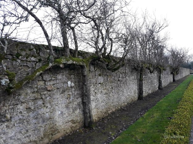 Battle of the boyne place (6)