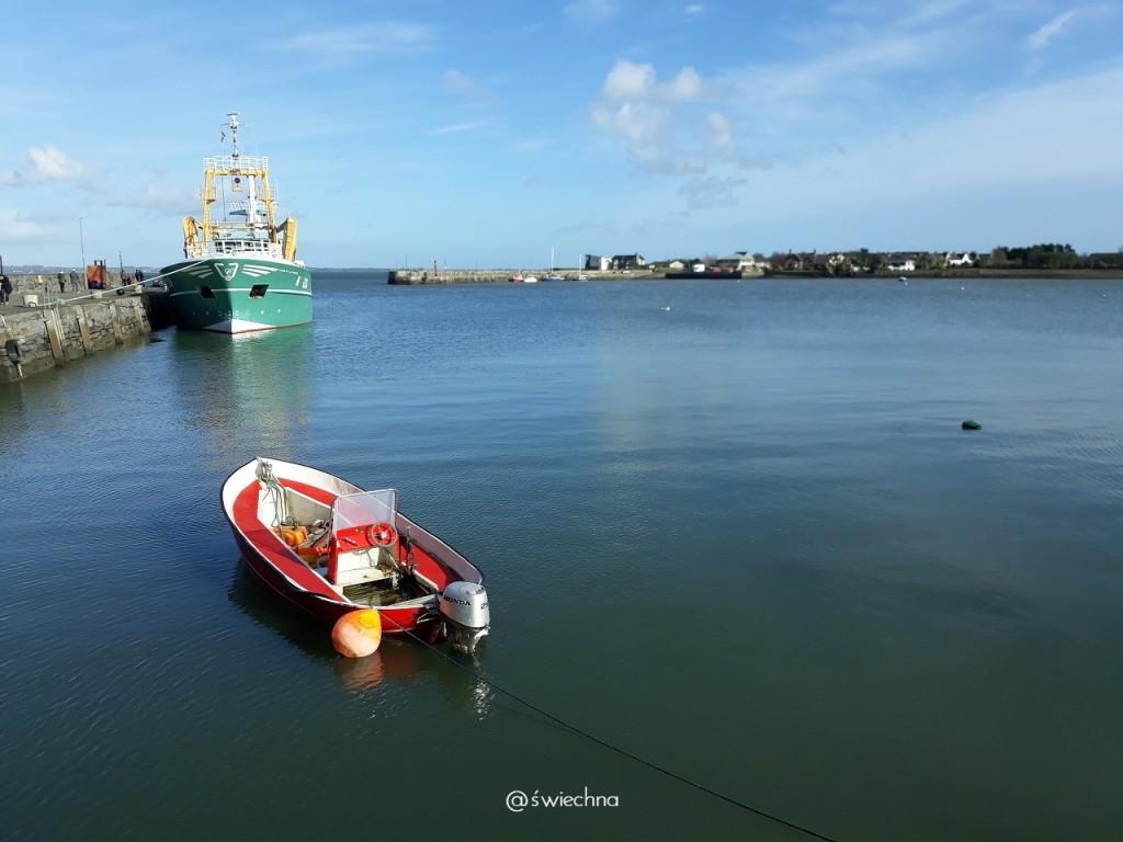 Carlingford pier (3)