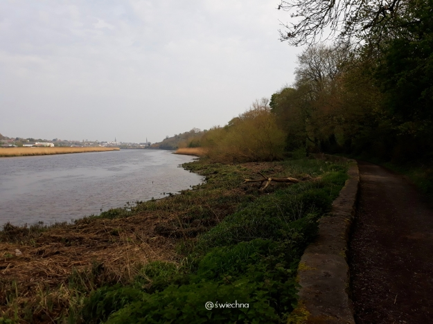 Drogheda Greenway (2)