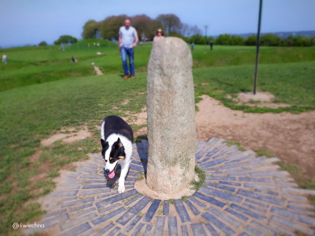 the Hill of Tara (5)