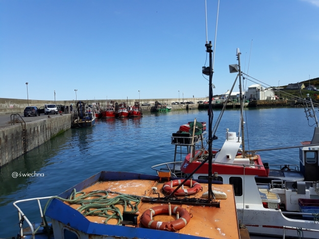 Port Oriel (2)